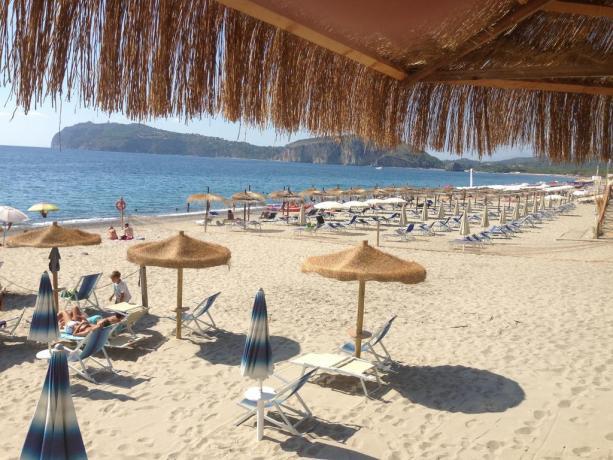Residence con Spiaggia convenzionata Arco Naturale Palinuro