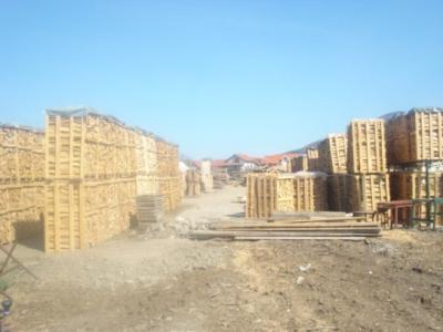 Trasporto legno per camino, stufa e barbecue
