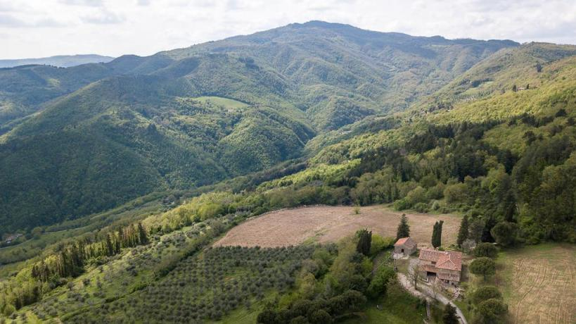 Azienda-Agrituristica a Val di Sieve con Piscina