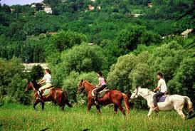 Ospitare il vostro cavallo presso l´agriturismo