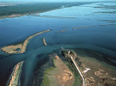The national park of the Po Delta, Veneto