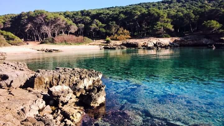 Villaggio nel Salento vicino Gallipoli: Mare-Cristallino