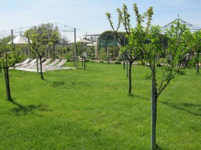 Frutteto Parco Eventi ad Assisi