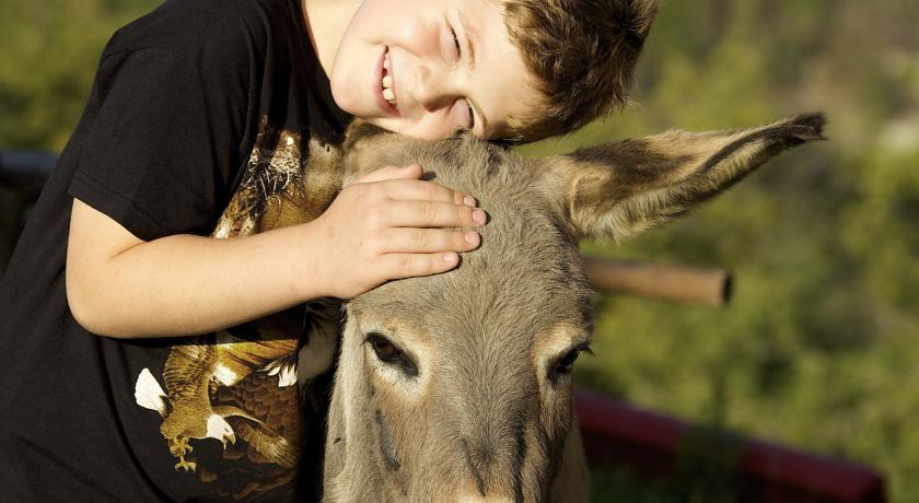 Cura degli Animali Agriturismo Olistico del Benessere