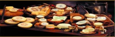importazione-esportazione-latte