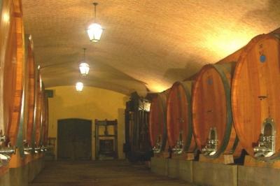 botti di legno per maturare meglio il vino