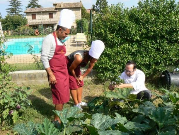 Corso di Cucina e di coltivazione orto Biologico