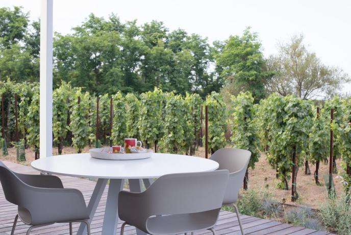 Tavolo esterno vigneto appartamento-vacanza moderno Lipari