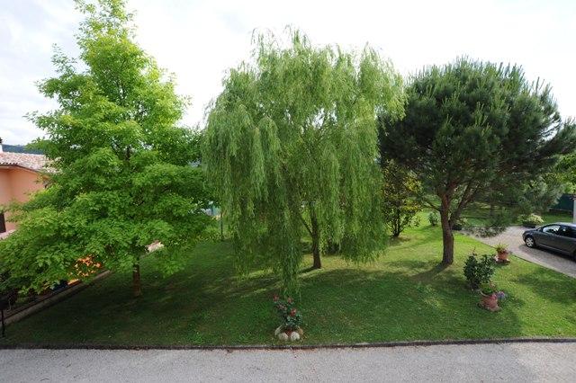 vista sul giardino dell'agriturismo appartamento Quercia Rossa