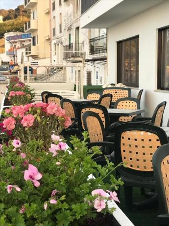 Colazione in riva al mare Hotel Rodi Garganico