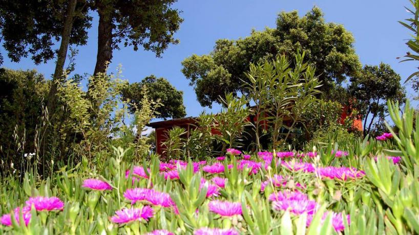 Lago Liscia ideale vacanze Relax e Non Resort4stelle
