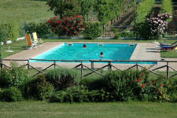 Piscina per adulti e Bambini in Agriturismo Umbria