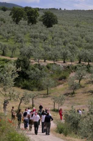 Manifestazione in Umbria per famiglie e giovani
