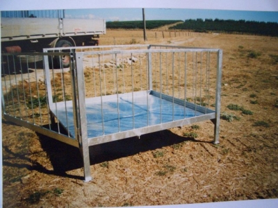Transenna zincata a caldo metalmeccanica produzione e for Cattura per capre