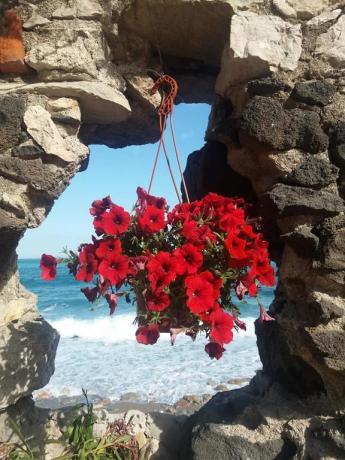 Residence a Villagonia con Spiaggia Privata Attrezzata