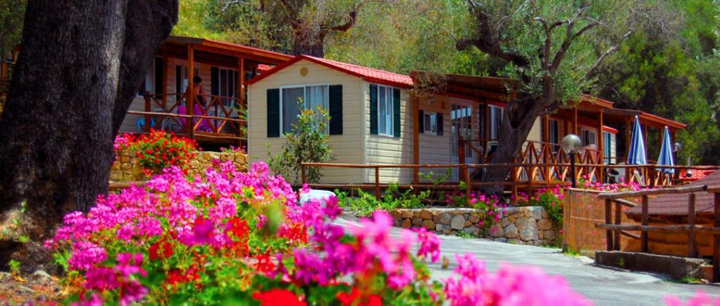 Villaggio con Bungalows e Piscina nel Cilento