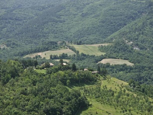 Agriturismo nel verde del Parco Monte Subasio