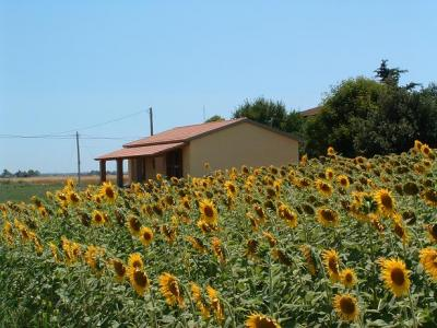 vista della nostro bed and breakfast in toscana