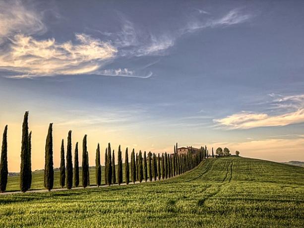 Viaggio Organizzato in-Toscana con-degustazione-vini