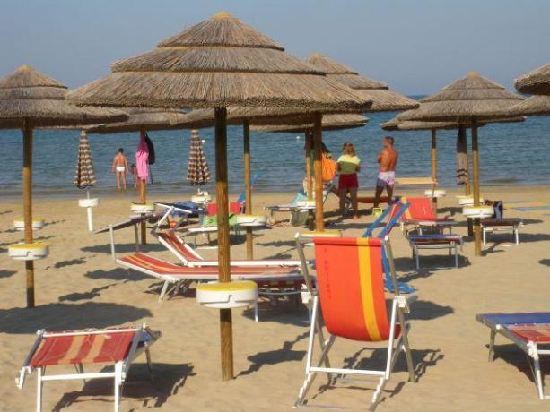 Spiaggia con lettini e sdraio