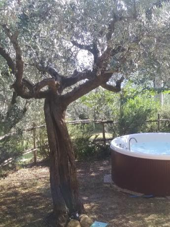 Appartamento in castello Assisi e minipiscina riscaldata