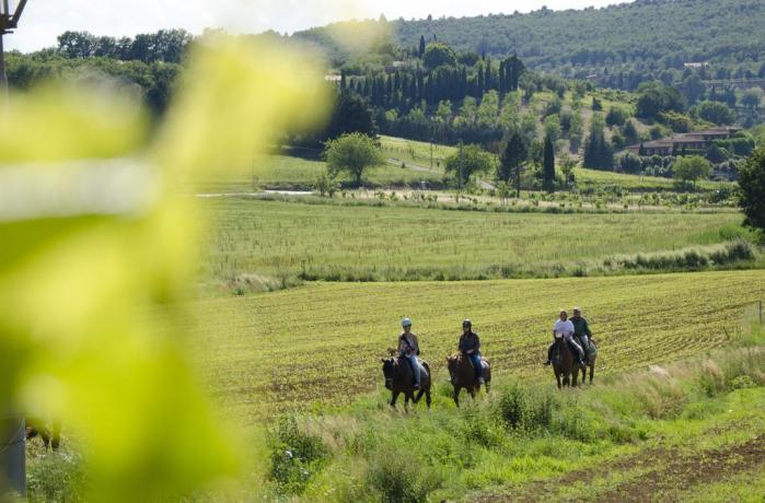 Maneggio cavalli in Agriturismo vicino Perugia