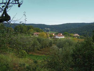 Azienda agricola con bed and breakfast