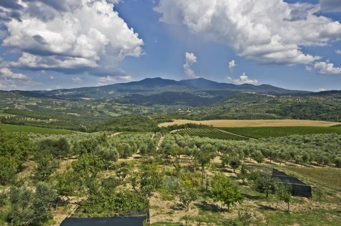 Country house nel verde in Toscana