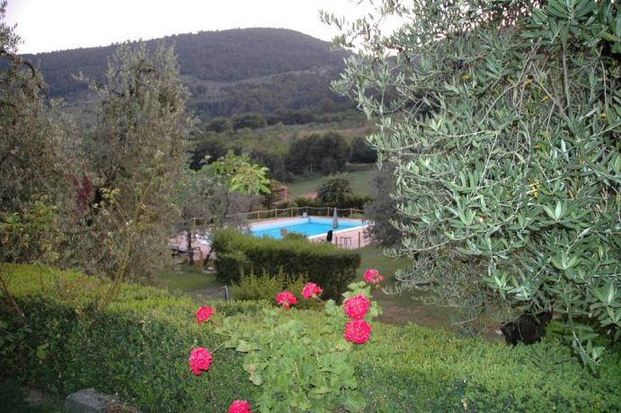 Veduta piscina agriturismo a Ferentillo