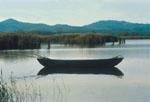 Pesca al Lago Trasimeno