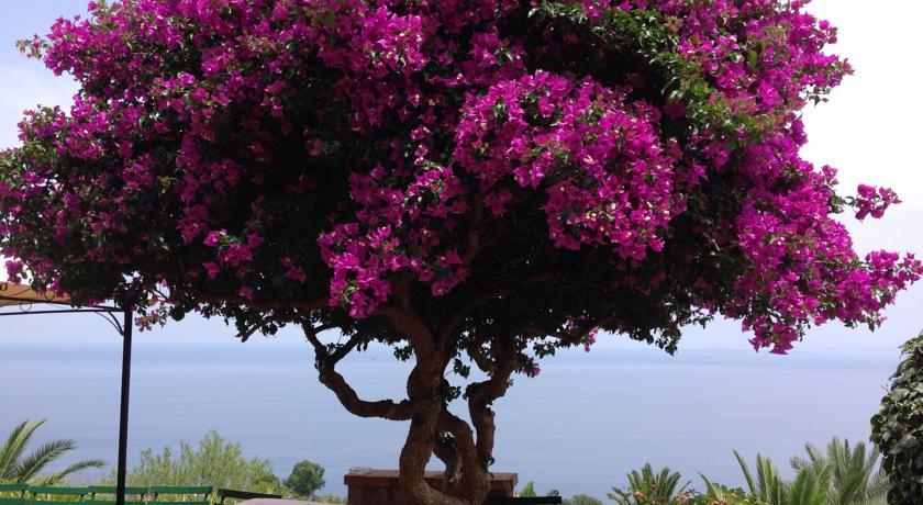 Camere in Agriturismo sul Mare a Messina