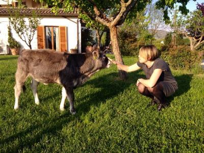 Fattoria didattica in Umbria ideale per famiglie