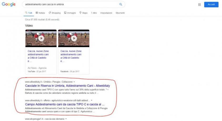 Esempio Pubblicita Web che Funziona: Addestramento-Cani-Caccia-Umbria