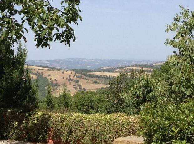 Paesaggio dell'azienda agraria dell'agriturismo