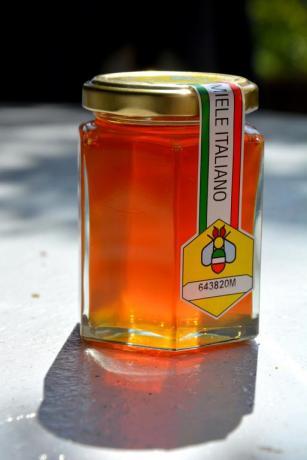 Miele di produzione propria affittacamere Genzano di Roma