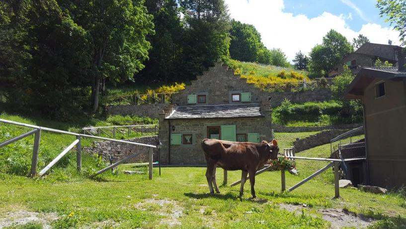 Casale per famiglie a Cimone immerso nella natura