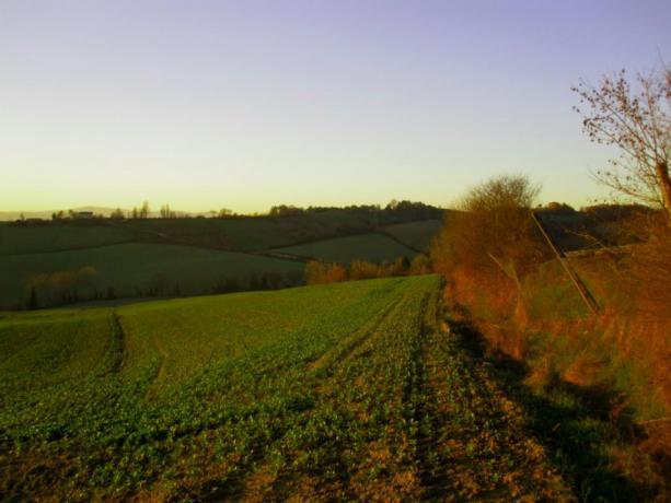 Vista paesaggio umbro a Montone
