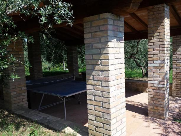 Giochi all'aperto per Bambini a Bettona-Umbria