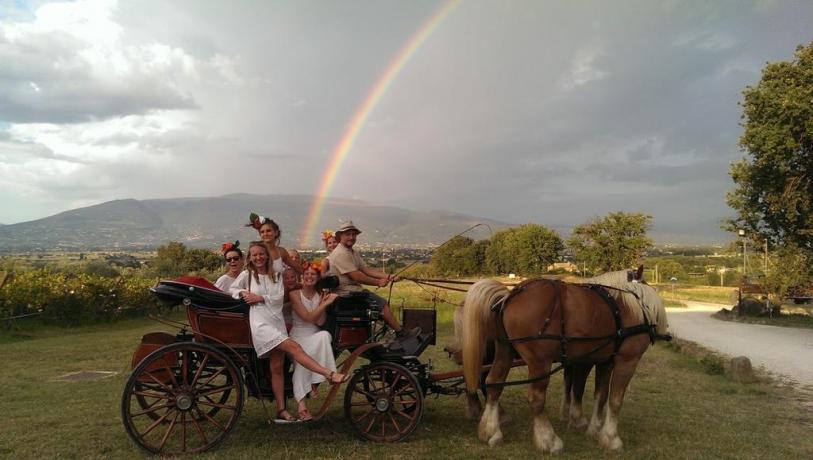 Campagna Umbra vista Assisi