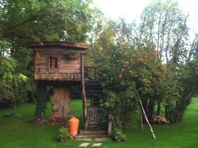 Baita sull'albero con sauna