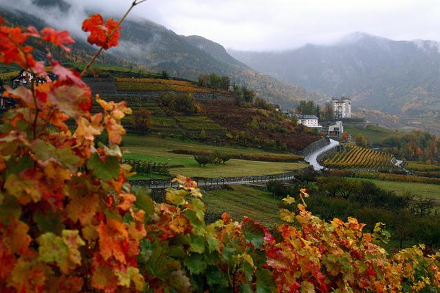 Hotel ideale per escursioni Vigneti Barolo Barbaresco