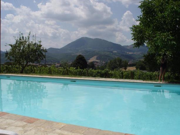 Piscina panoramica in agriturismo a Umbertide con solarium