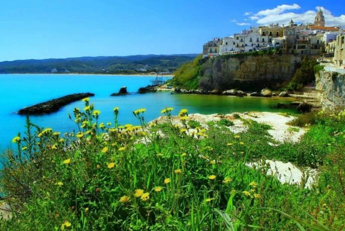 Vacanze a Vieste residence fronte mare