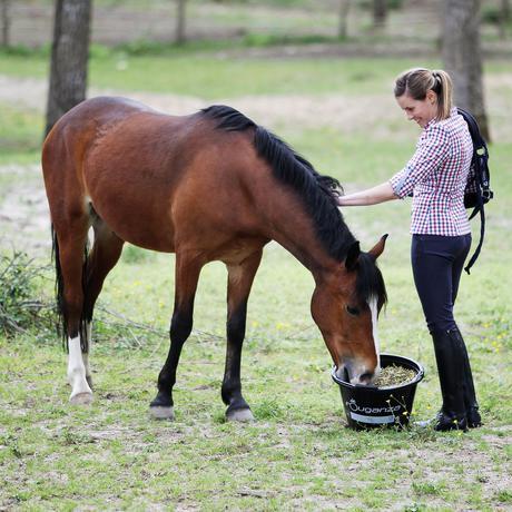 Escursioni a Cavallo a Forra di Prodo