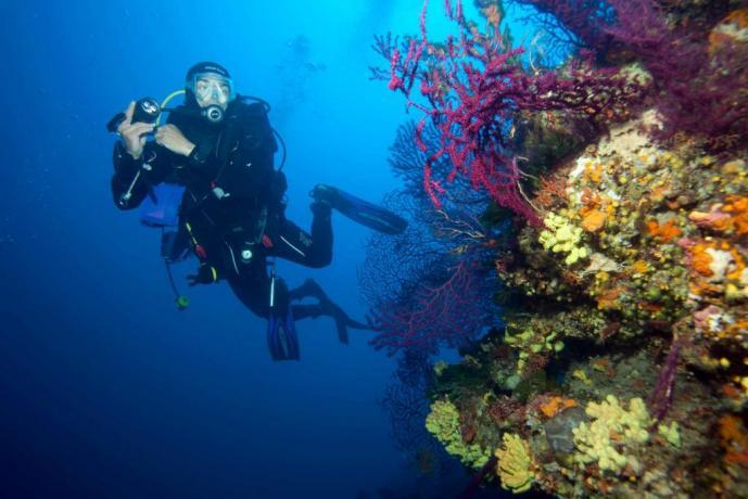 Escursioni subacqua disponibile nel hotel vicino Cosenza