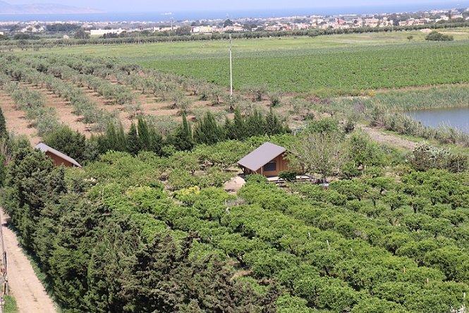 Gampling in Agriturismo Sicilia, immerso nel  verde