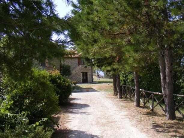 PONTE DI OGNISSANTI in Agriturismo con Ristorante biologico vicino Gubbio con Bonus Vacanze Accettato