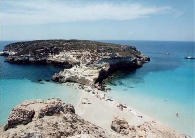 Lampedusa, the island of rabbits