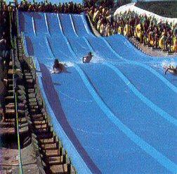 The Best Waterpark in Italy, Aqualandia Jesolo