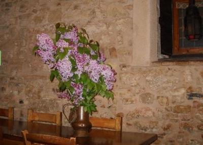 Angolo del ristorante in Valnerina